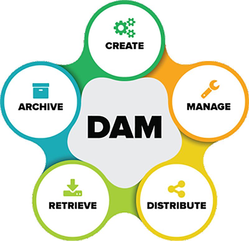 DAM services